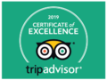 2019 tripadvisor certificate of excellence logo