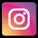 Instagram Icon used in Cabo Villas Beach Resort site