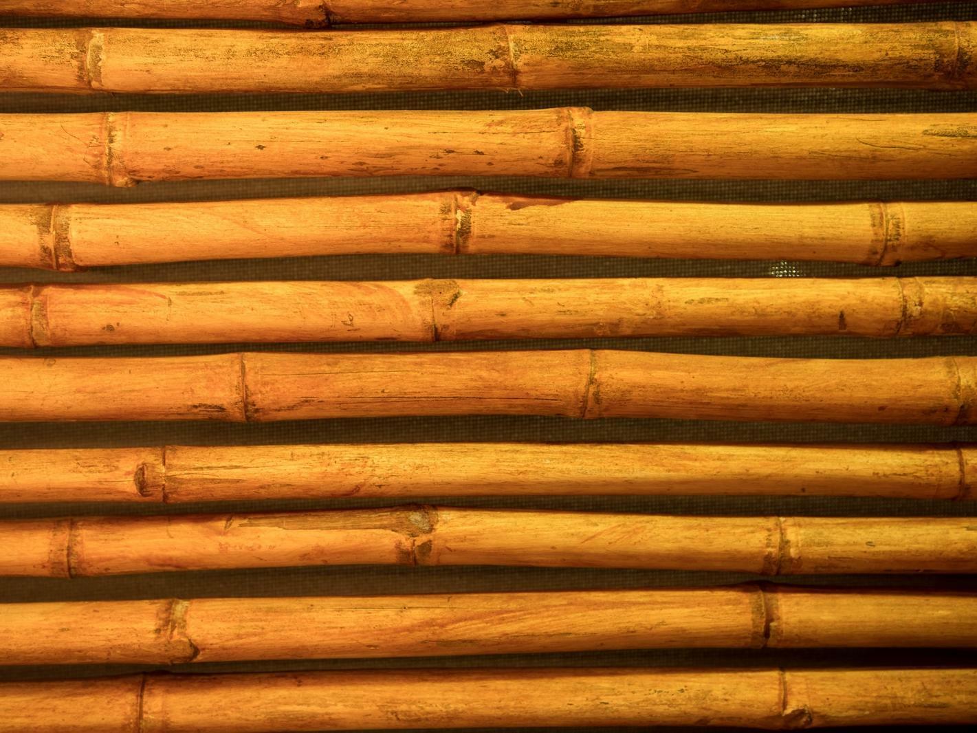 bamboo stick wall