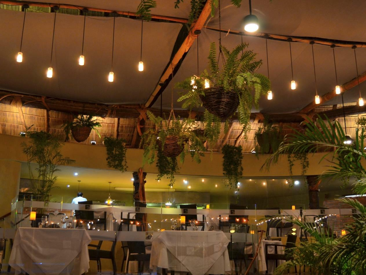 restaurant with dining tables and plants