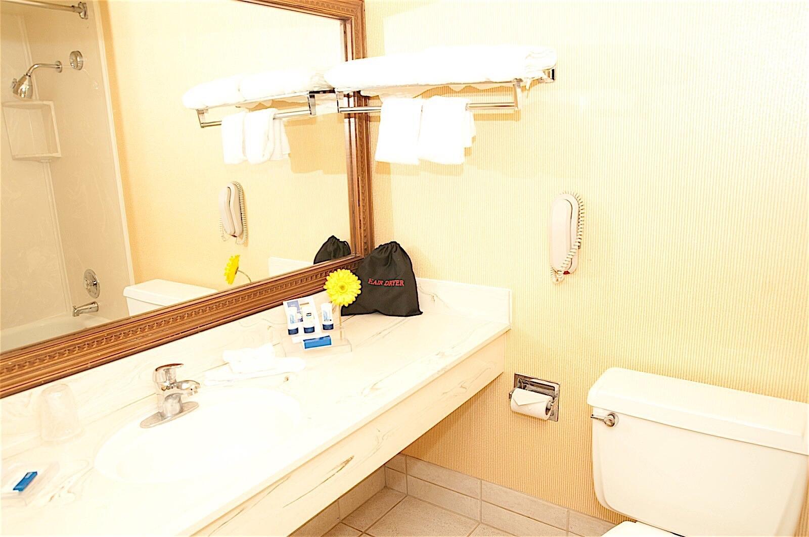 Bathroom in Standard King Room