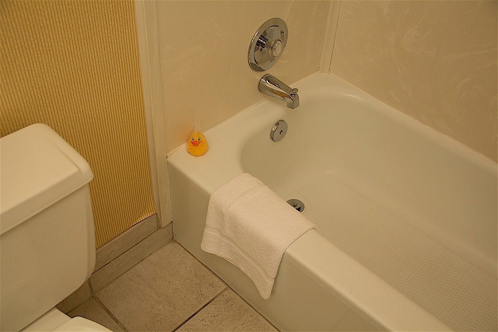 Standard King Room Bathtub
