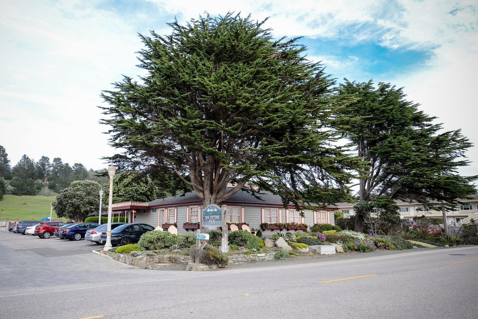 Street view of Sea Otter Inn