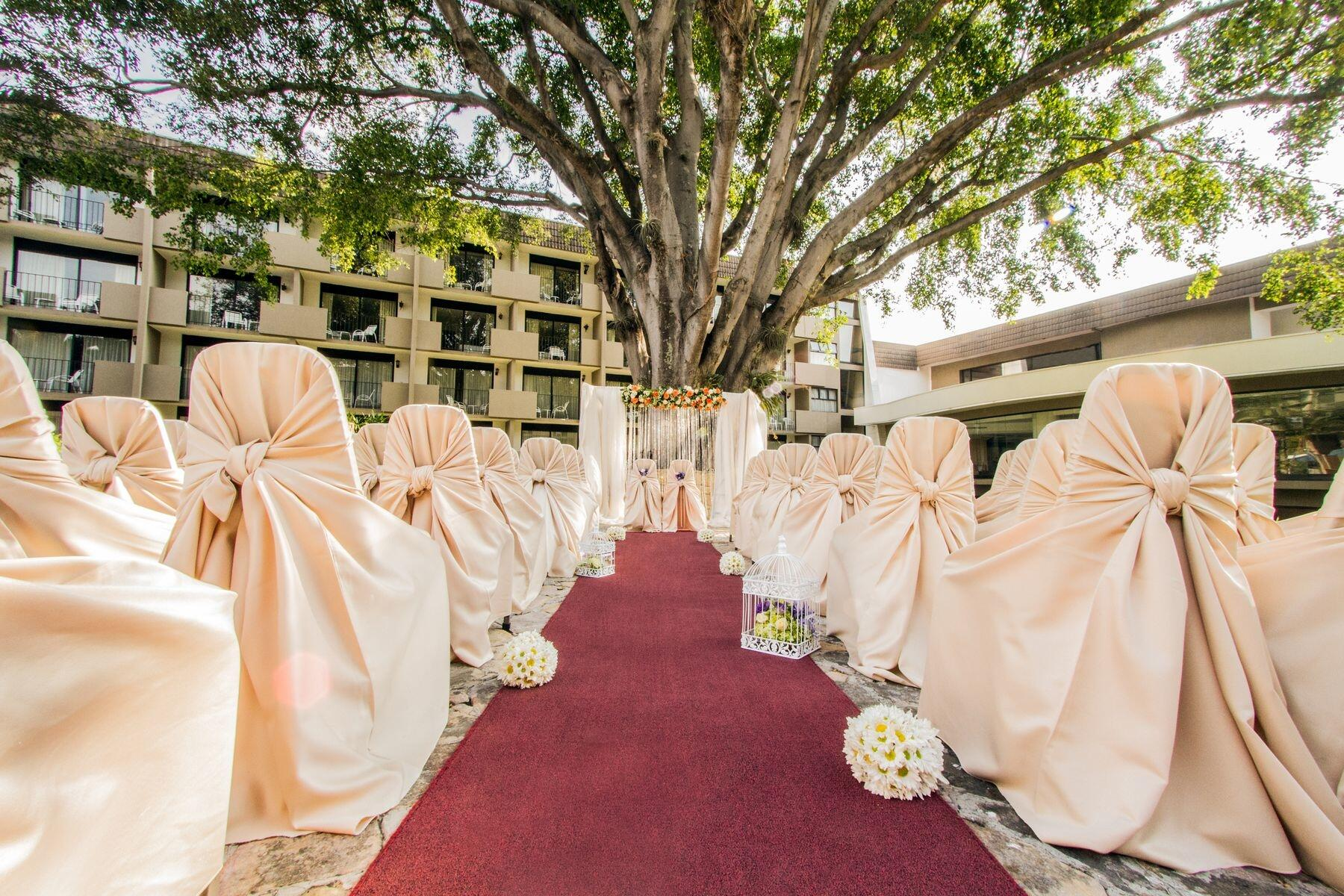 Carpeted walkway to wedding alter