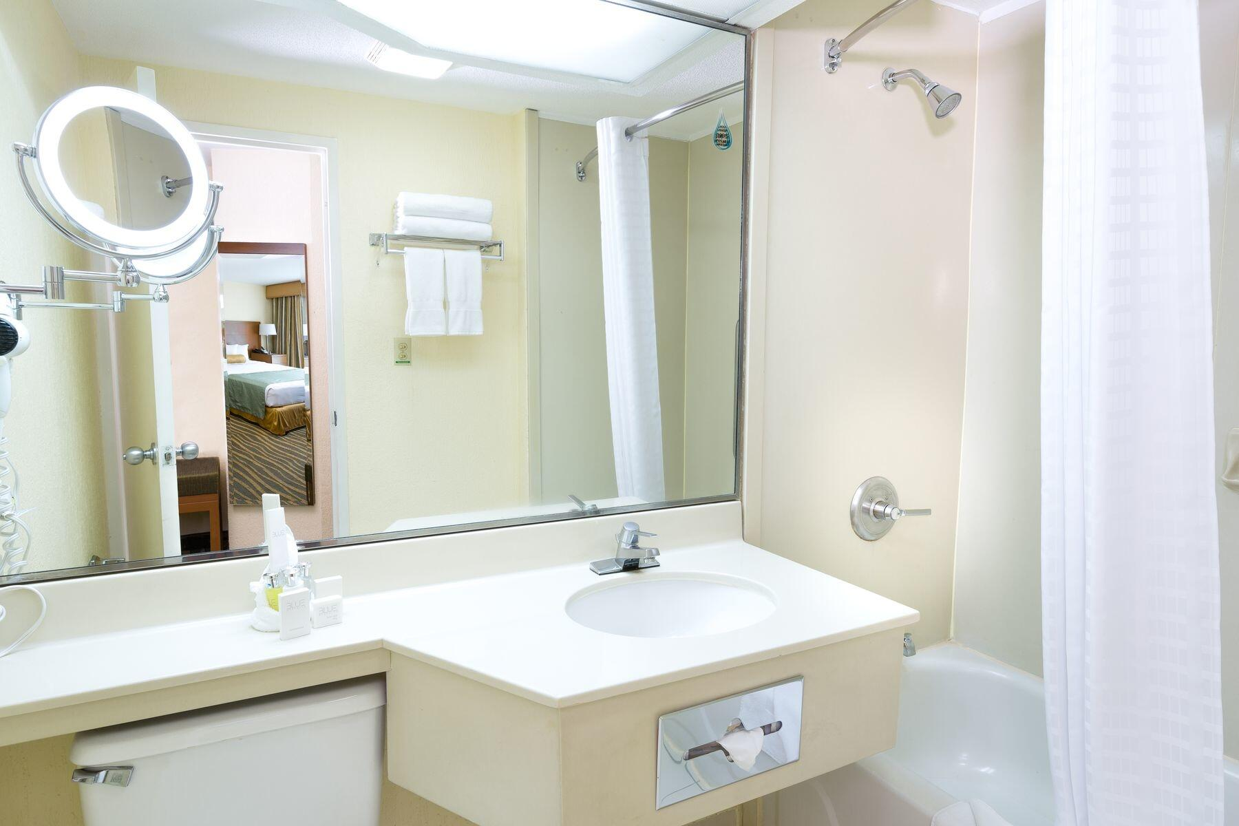Bathroom shower and vanity with wall mounted lighted mirror