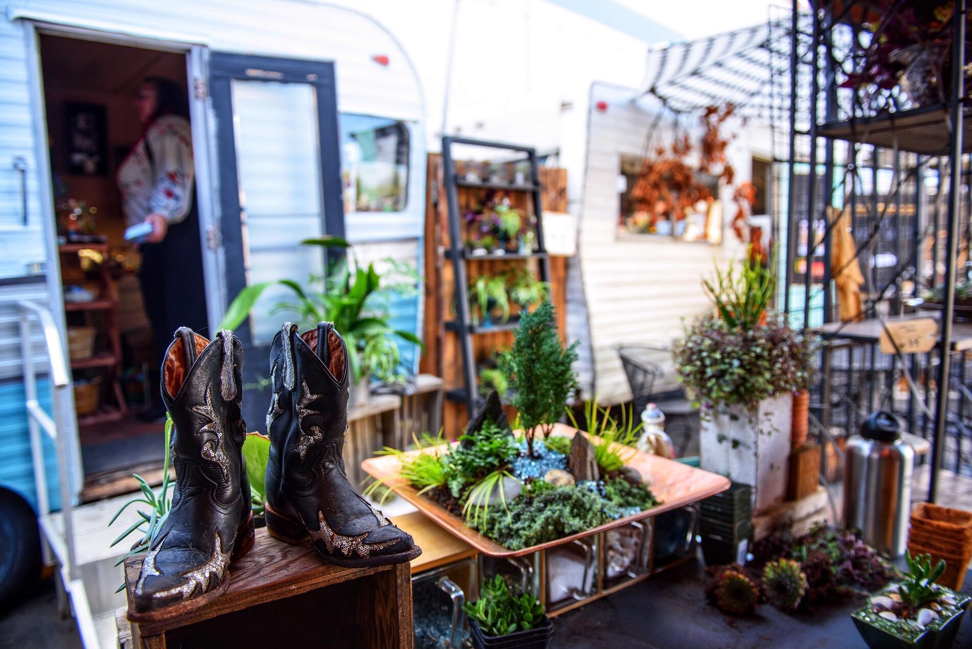 plants outside trailer
