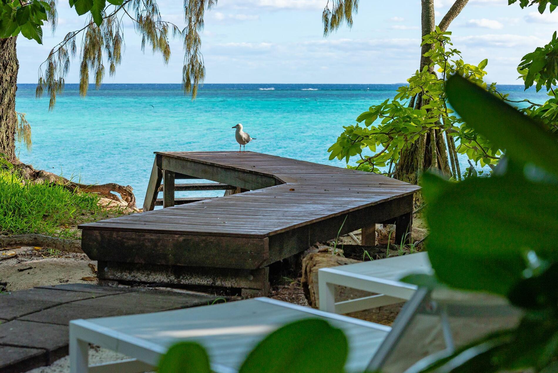 View from the Beach House Heron Island Resort