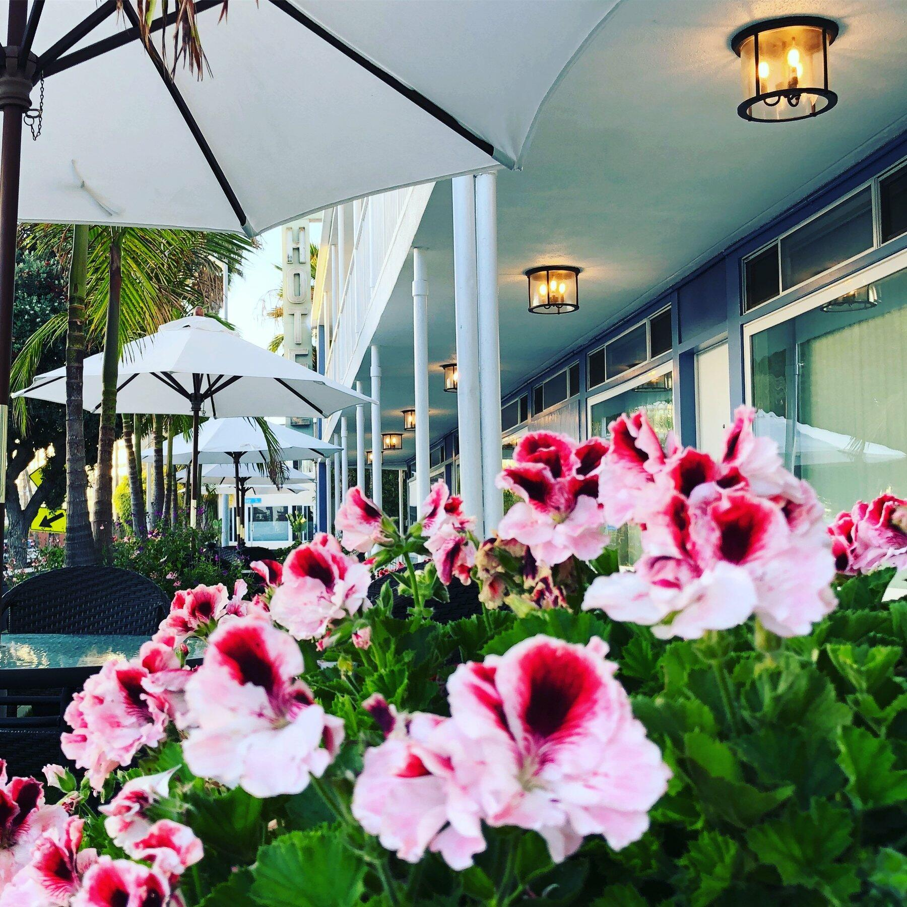 Exterior of hotel with umbrellas and flowers