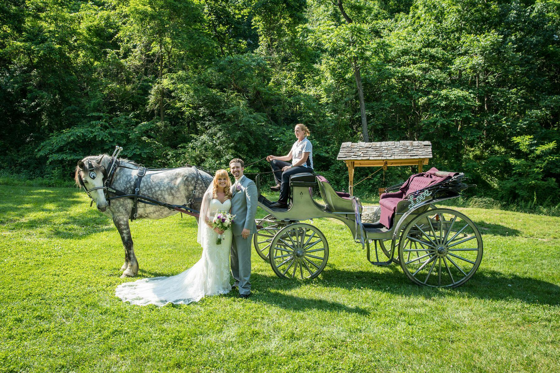 Newlyweds with horse and carriage at Gettysburg.