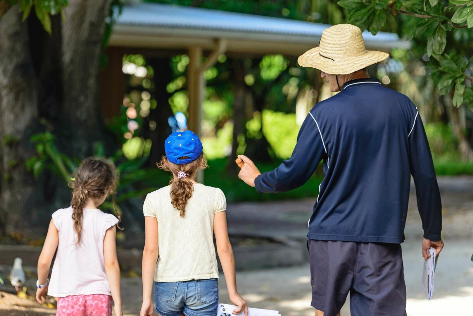 Things to do at Heron Island