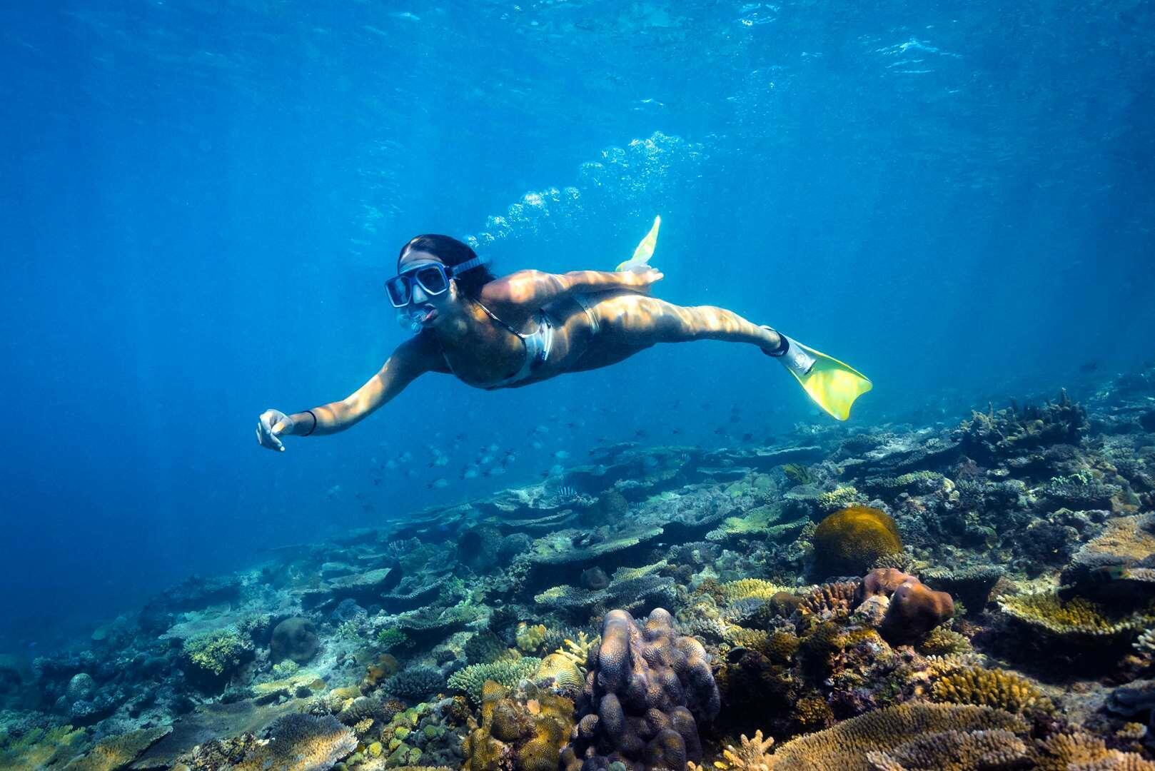 Water Activities at Heron Reef