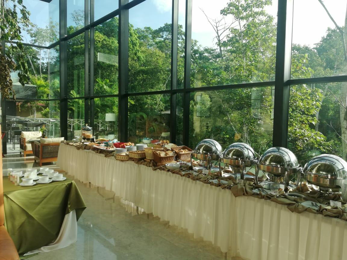 Buffet Bar with view of the Rainforest