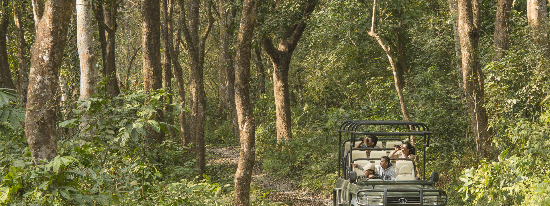A men driving  a vehicle with his family through the jungle at M
