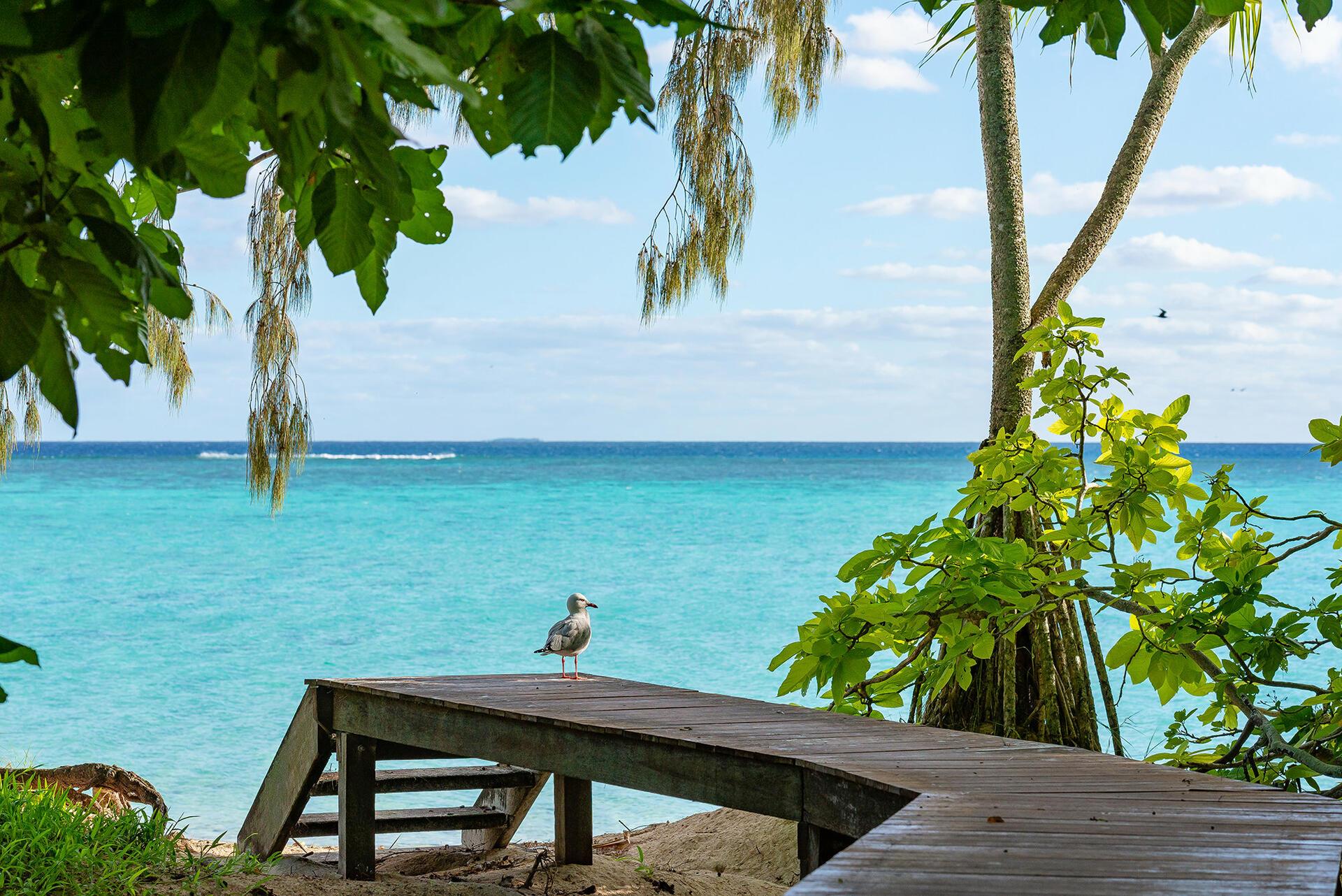 Beach near Heron Island Resort in Queensland, Australia