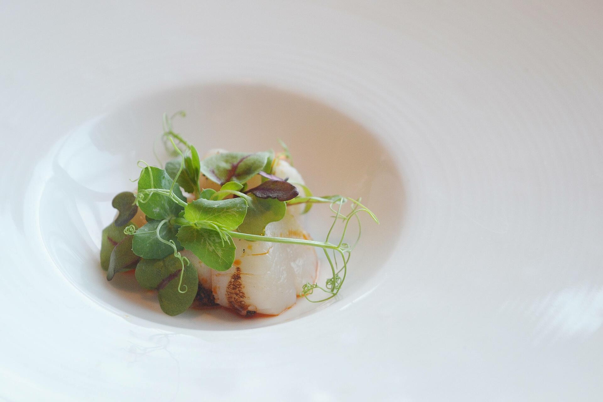 Light scallops dish
