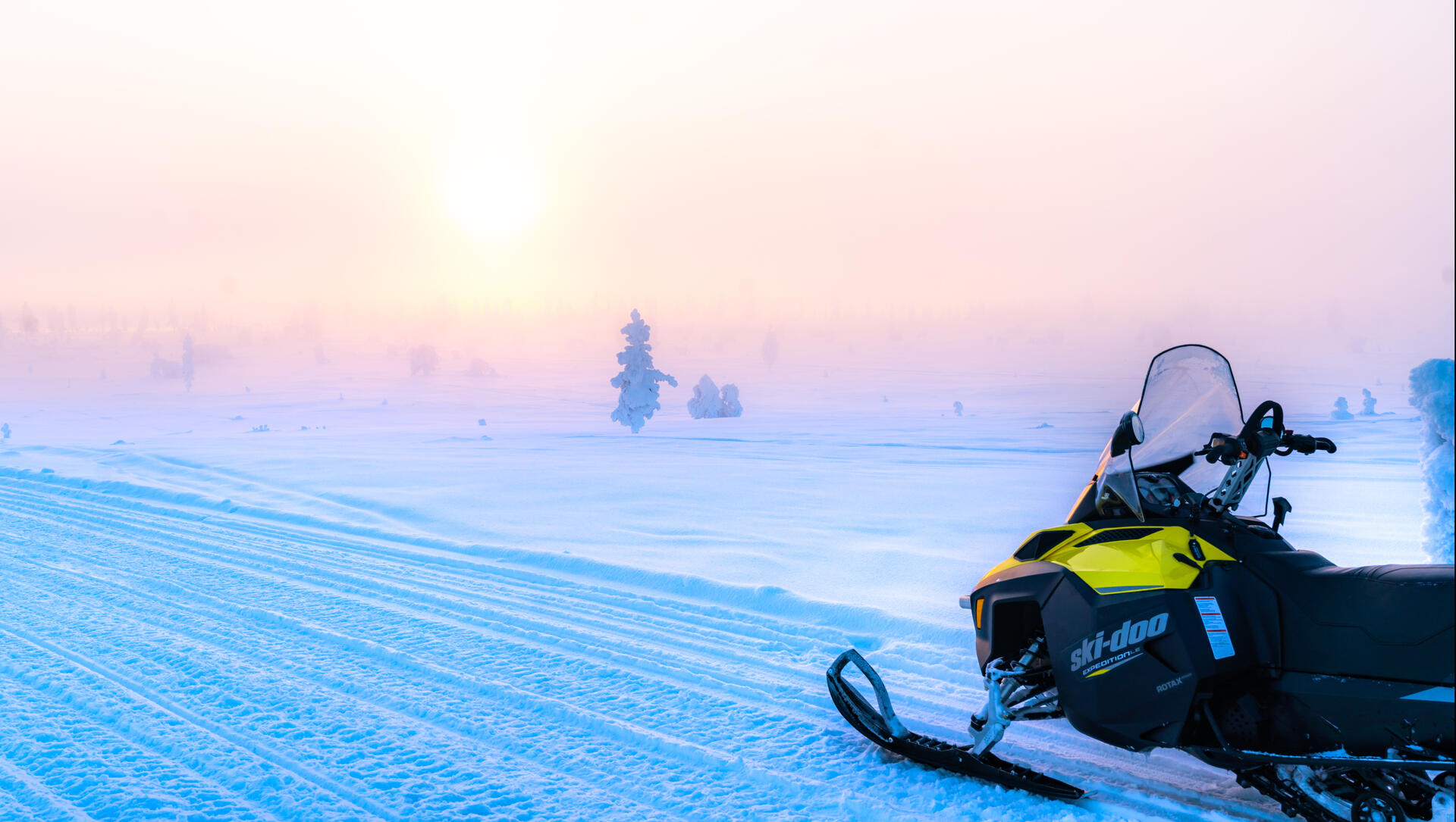 Activities near Northern Lights Village in Saariselkä, Lapland