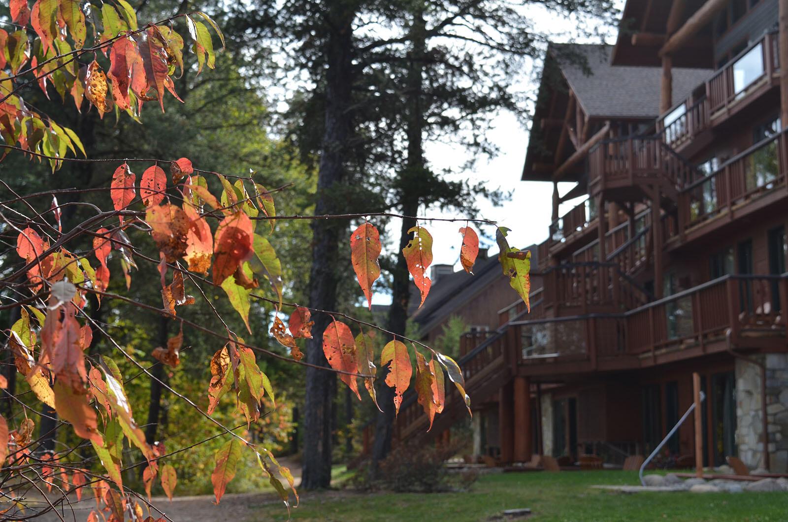 Vacances Foret dans Auberge du Lac Taureau, The Originals Relais