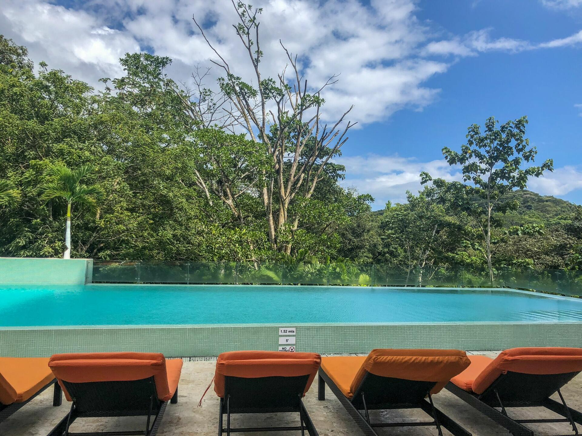 Infinity Pool with view of rainforest