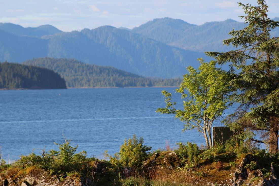 Panoramic photo of Alaskan landscape.