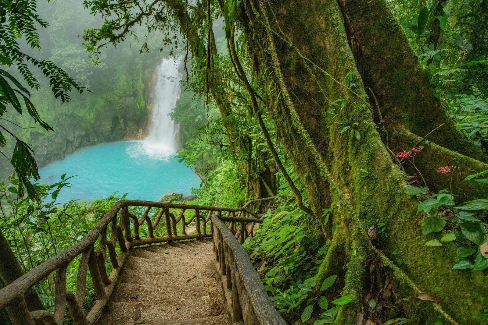 Walway to the Waterfall