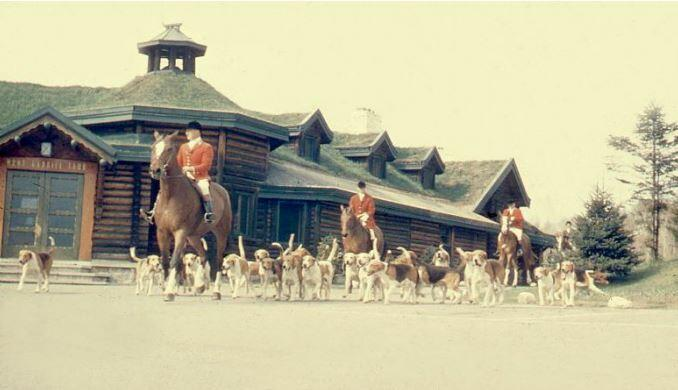 Group of hunting dogs follow three men on horses