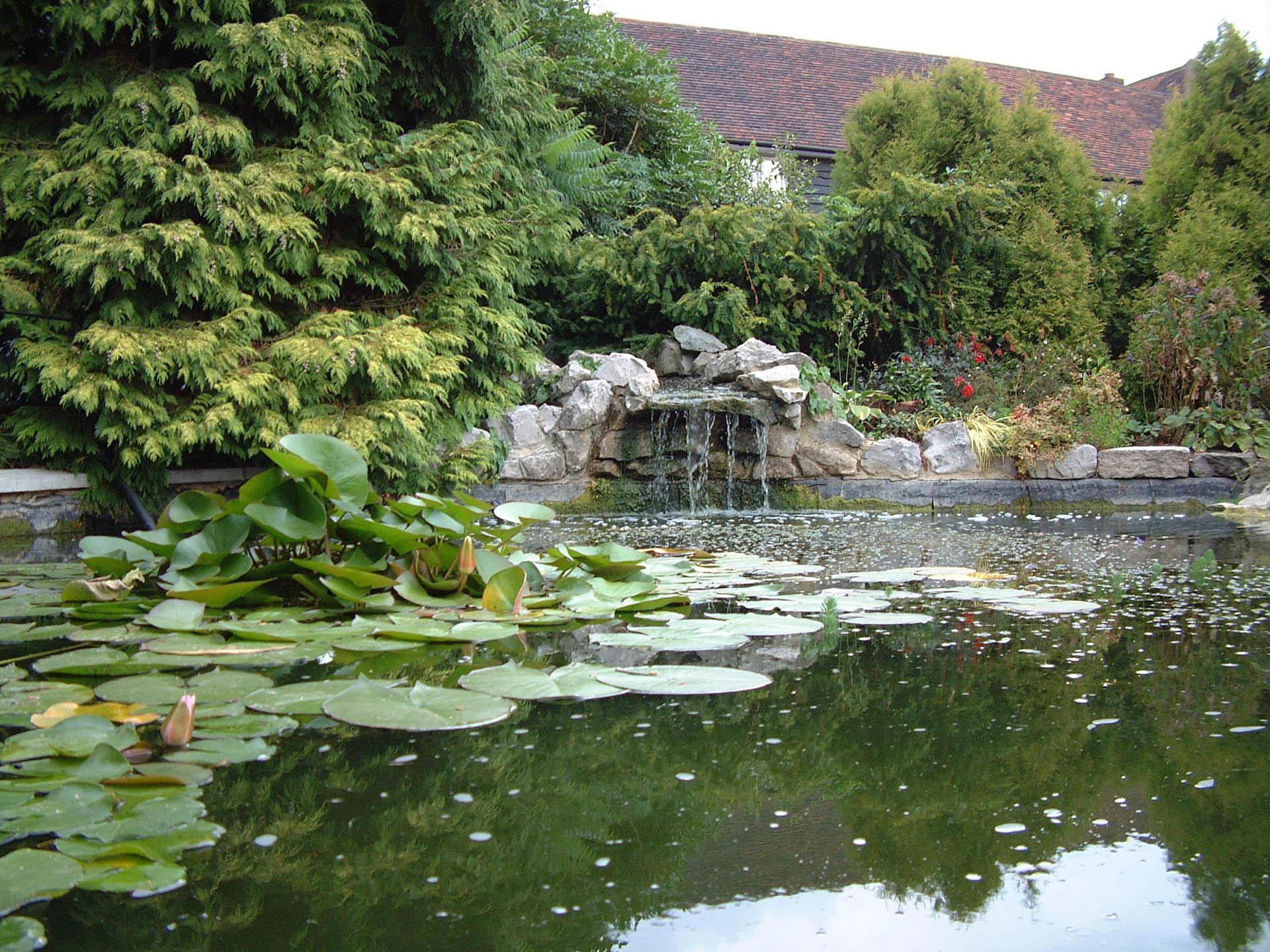 Pond at The Barn Hotel, Ruislip