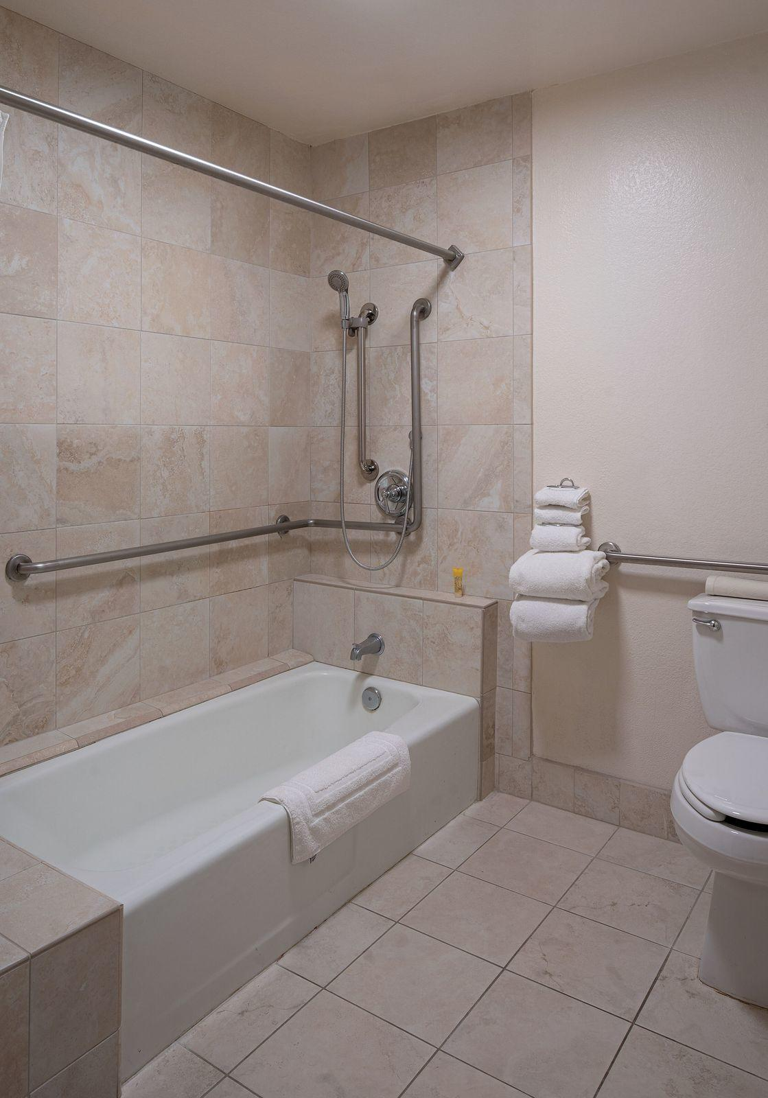 Ground floor tub, a shower, and a toilet in a hotel bathroom