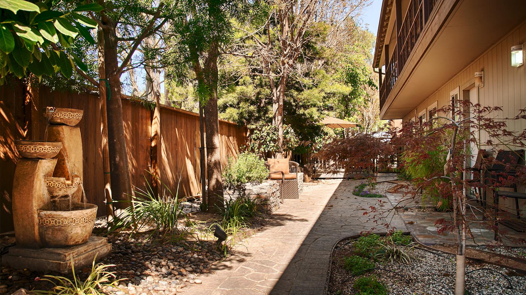 Garden at The Zen Hotel