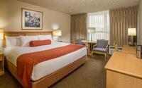 Hotel 116, a Coast Hotel - Standard King Guestroom
