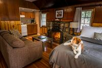 Tekarra Lodge - Bachelor Pet Friendly