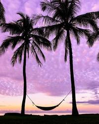 pink sunset and hammock at Waimea Plantation Cottages