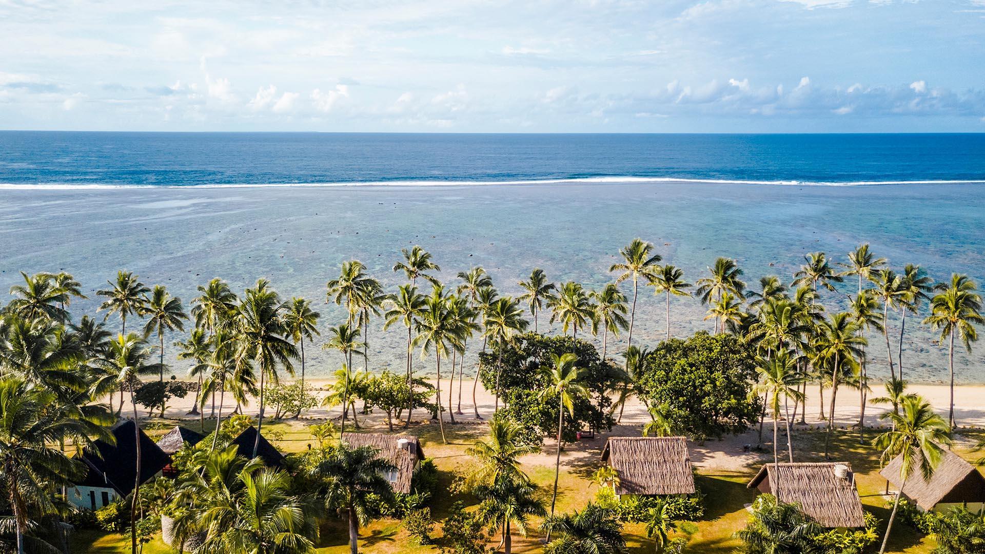 Palms Facing Ocean in Fiji