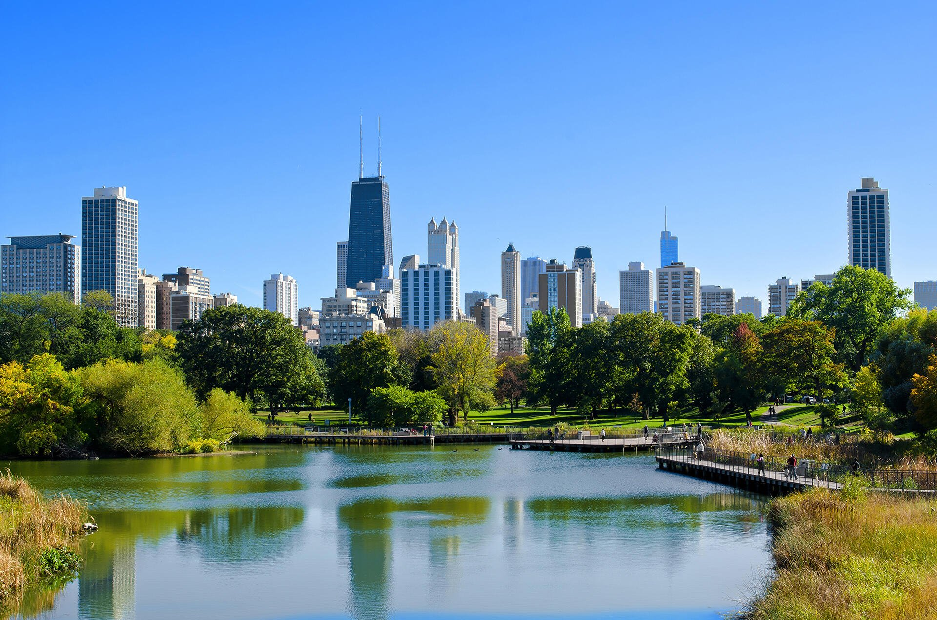 chicago skyline during a summer day
