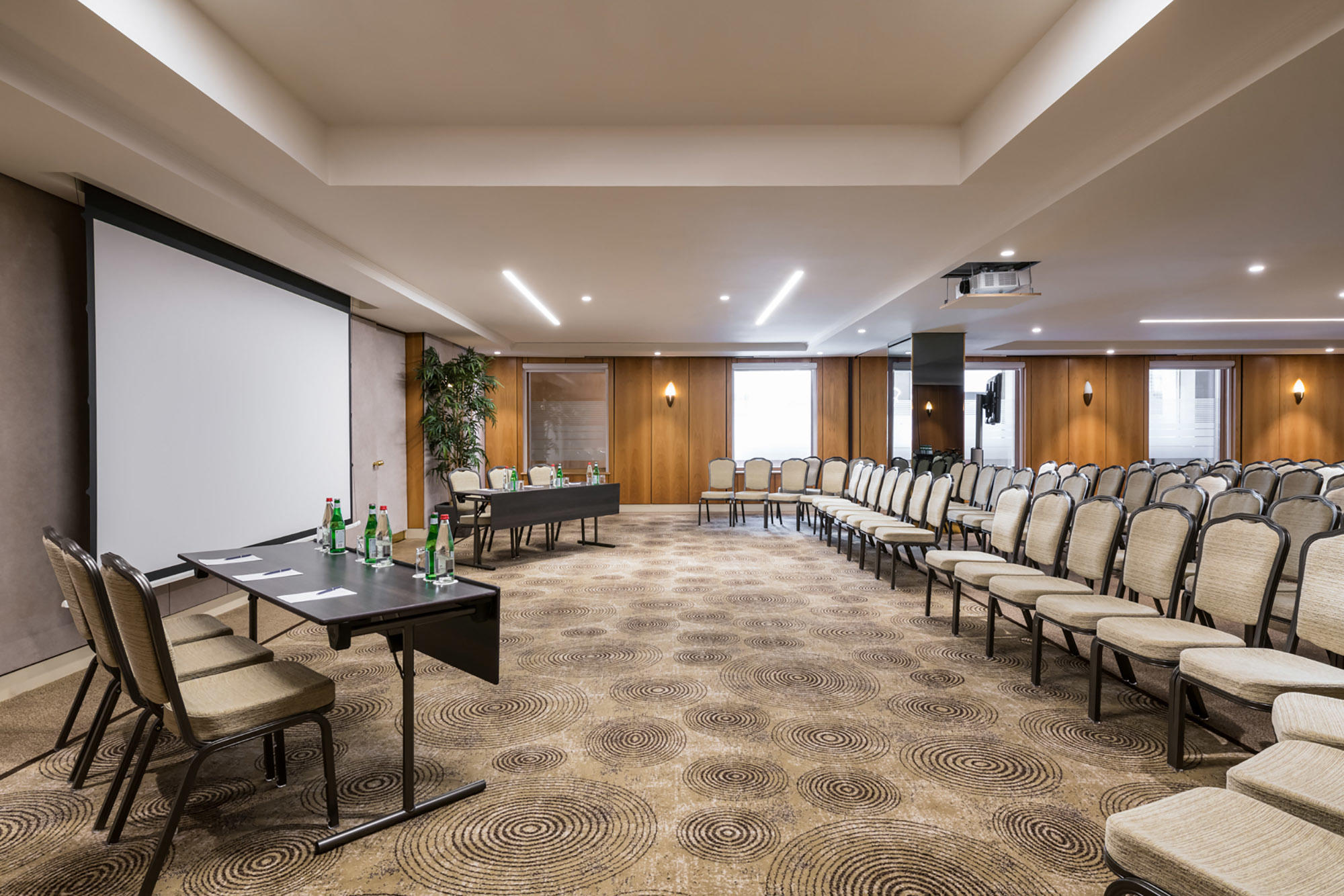 Meeting Room Theatre with Natural Light