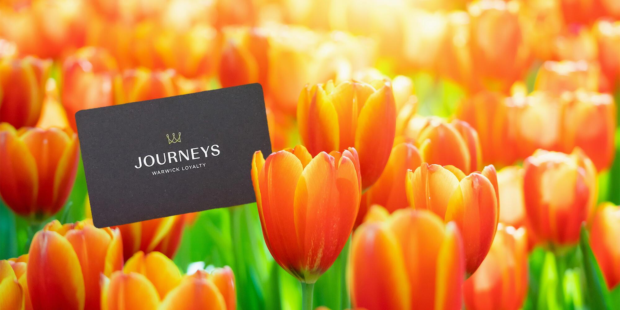 Warwick Journeys Member Exclusive Rate