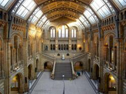 National history museum at Sloane Square Hotel