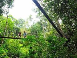 Places of Interest - Penang National Park