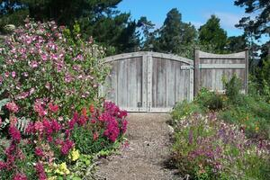 Garden with a dirt path that leads to a wooden gate