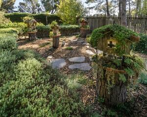 Garden with bird houses