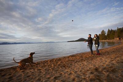Couple walking dog on lake shore