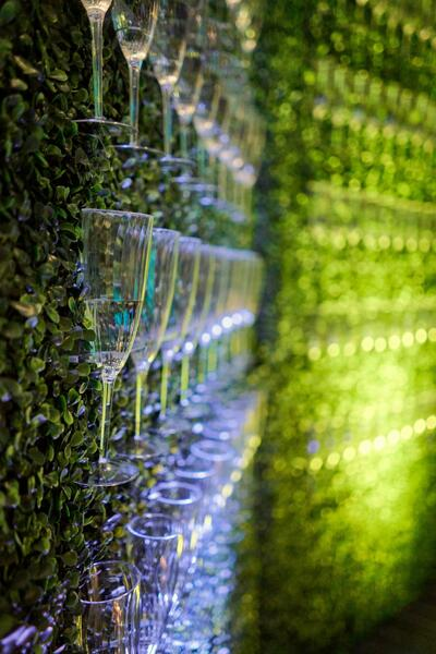 grass wall with glassware in it