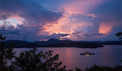 Views Ferry