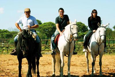 horses at Precise Resort El Rompido