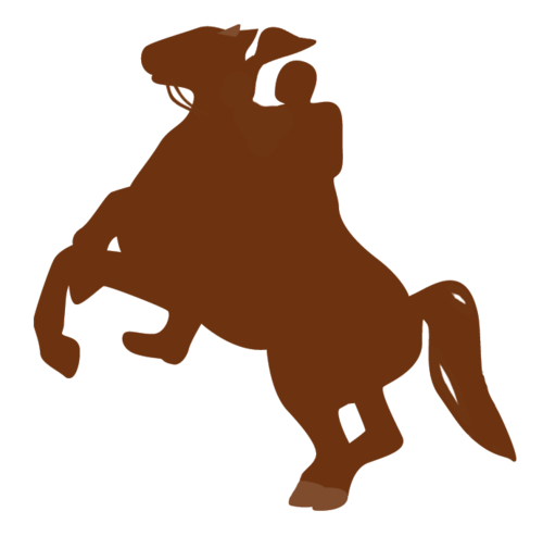 Rodeo icon in brown