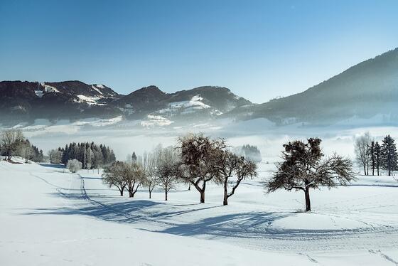 Winter at Romantik Hotel Schloss Pichlarn, Austria