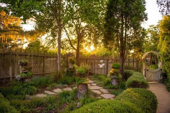 Sun set shining through trees onto a garden with a cobblestone w