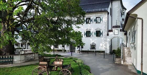 Linde im Schloss Pichlarn