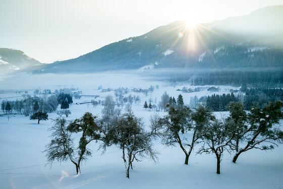 Sonnenaufgang im Schloss Pichlarn