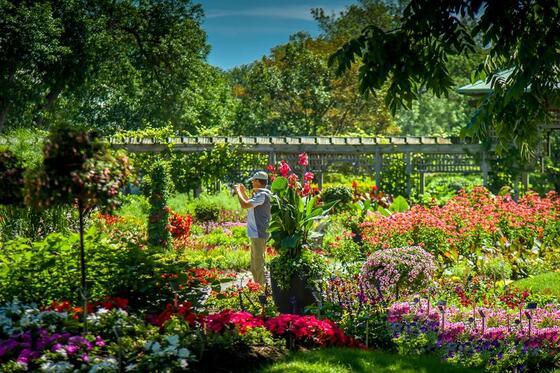 Landscaping at Botanical Gardens.
