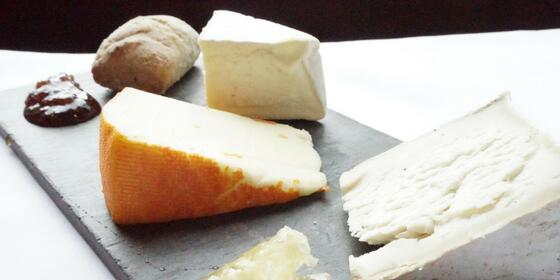 various cuts of delicious cheese